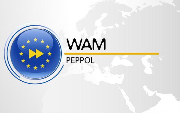 WEBINAR 15.05.2019 - PEPPOL